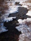 Река в предыдущей весне стоковая фотография