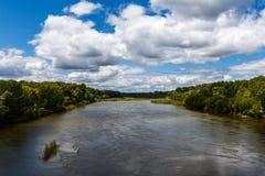Река в пуще стоковые изображения