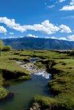 Река в плато Тибета Стоковые Фото