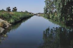 Река в ринве с деревом над водой и пальмами стоковые изображения rf