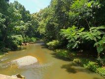 Река в самаре, Guanacaste, Коста-Рика Стоковое Изображение