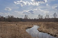 Река в сельской местности Стоковые Изображения RF