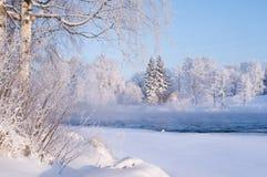 Река в снежном ландшафте зимы Стоковая Фотография RF
