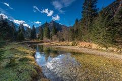 Река в alps Стоковые Фотографии RF