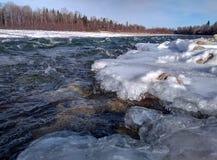 Река в taiga Сибирь стоковое фото rf