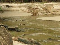 Река в Trindade - Paraty RJ Стоковое фото RF