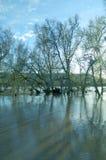 Река Гвадалквивира переполнило стоковые фото