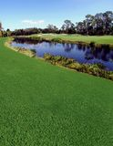 река гольфа курса Стоковая Фотография RF