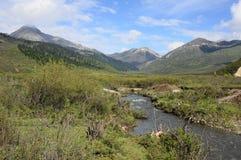 река горной цепи Стоковые Изображения RF
