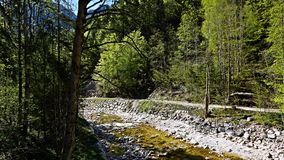 Река горы в Альпах стоковое изображение