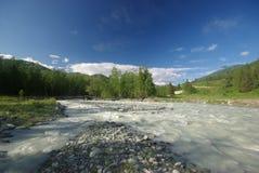 Река горы в горах Течение через ущелье река Камни и скалистая земля около реки Красивейшая гора Стоковые Изображения RF