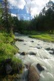 Река горы в горах Течение через ущелье река Камни и скалистая земля около реки Красивейшая гора Стоковое Изображение