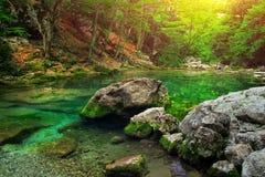 Река горы в лесе и местности горы. Стоковая Фотография RF