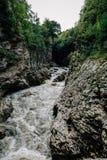 Река горы в каньоне серых камня и леса, естественного ландшафта битника Стоковое Фото