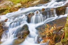 Река горы в национальном парке Geres стоковые изображения