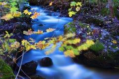 Река горы в последней осени Стоковое Изображение