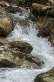 Река горы в прикарпатских горах Стоковые Фотографии RF