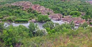 Река горы в пуще Стоковые Изображения