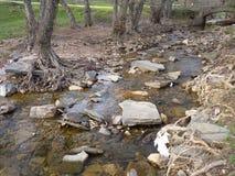Река горы в середине зеленого леса Стоковые Фотографии RF