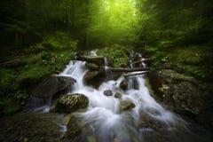 Река горы в туманном дне Стоковые Фотографии RF