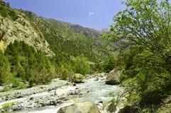 Река горы в ущелье Galuyan, Кыргызстане Стоковое Изображение RF