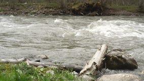 Река горы в Georgia акции видеоматериалы