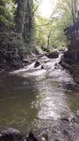 Река горы в Georgia, Adjarija Стоковое Изображение RF