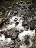 Река горы в Georgia, Adjarija Стоковое Фото
