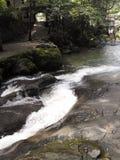 Река горы в Georgia, Adjarija Стоковые Фотографии RF