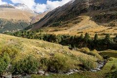 Река горы и окружающая среда ландшафта деревьев hiking alps Покрашенные холмы, большие горы Стоковая Фотография RF