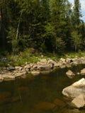 Река горы каменистое побережье в деревянном лете России Sou стоковая фотография