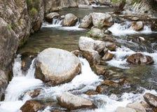 Река горы, красивая вода мелководья горы Речные пороги воды Река горы, водопад речного порога зеленого цвета леса Стоковые Изображения