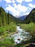 река горы малое Стоковые Изображения