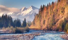 Река горы на показной пиковой предпосылке Стоковая Фотография RF