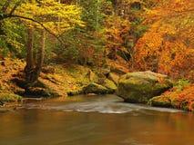Река горы осени с запачканными волнами, свежими зелеными мшистыми камнями, красочным падением Стоковые Изображения RF