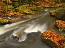 Река горы осени с запачканными волнами, свежими зелеными мшистыми камнями, красочным падением Стоковая Фотография RF