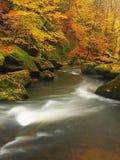 Река горы осени с запачканными волнами, свежими зелеными мшистыми камнями, красочным падением Стоковое Фото