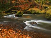Река горы осени с запачканными волнами, свежими зелеными мшистыми камнями, красочным падением Стоковые Фотографии RF