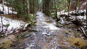 Река горы, поток, заводь с речными порогами в последней осени, предыдущей зиме с снегом, vintgar ущелье, Словения сток-видео