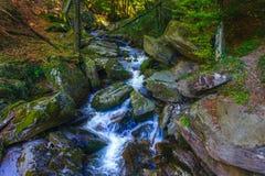 Река горы пропуская над утесами и валунами в лесе стоковые изображения rf