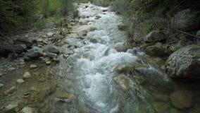 Река горы пропуская среди камней сток-видео
