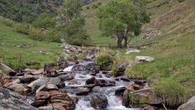 Река горы пропуская через малую долину видеоматериал