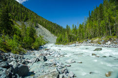 Река горы, Россия, республика Altai Стоковое Изображение RF