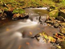 Река горы с низшим уровнем воды, гравия с первыми красочными листьями Мшистые утесы и валуны на речном береге стоковая фотография rf