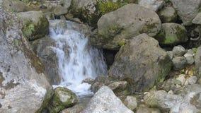 Река горы с чистой водой в горе Кавказа в Georgia около Kutaisi Каньон Martvili Национальный парк сток-видео
