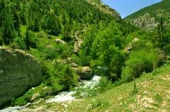 Река горы, ущелье Galuyan, Кыргызстан Стоковое Фото