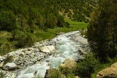Река горы, ущелье Galuyan, Кыргызстан Стоковые Фото