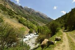 Река горы, ущелье Galuyan, Кыргызстан Стоковая Фотография
