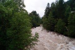 Река горы шумно, быстрый, опасный стоковая фотография