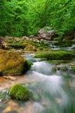 река горы Стоковое Фото